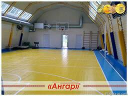 Ангары под разные виды спорта: спортивный зал, каток, площад