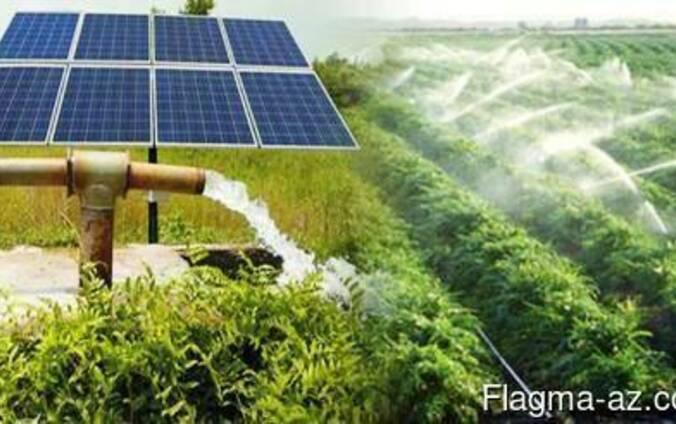 Günəş enerjisi motorla damcı sulama sistemda.