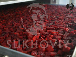 Инфракрасная сушильная камера для продуктов питания Sukhoviy - photo 4