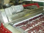 Машина для удаления косточек из вишни, сливы, абрикоса 1600 - фото 2