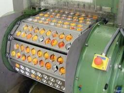 Машина для удаления косточек из вишни, сливы, абрикоса 1000 - фото 2