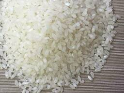 Medium grain rice, Camolino - photo 1