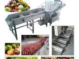 Meyve yıkama makinası - фото 1