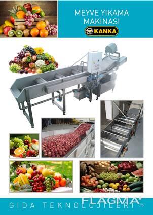 Meyve yıkama makinası