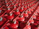 Огнетушитель порошковый от завода производителя - фото 2