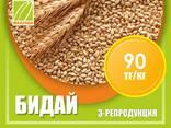 Оптом семена рис, люцерны и пшеницы - фото 2
