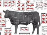 Продам говядину - фото 1
