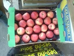 Яблоки с Азербайджана. - фото 4