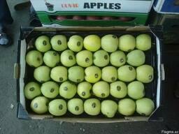 Яблоки с Азербайджана. - фото 5